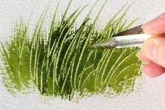 PX-Grasses1.jpg 300×200 pixels