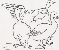 Ducks by jeninemd, via Flickr