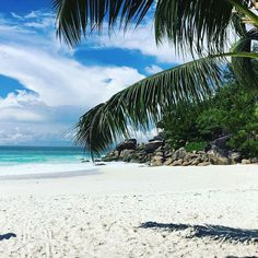 See this Instagram photo by @constancehotels • 281 likes