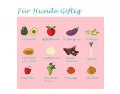 http://www.bellos.de/gift-fuer-den-hund/
