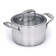 Stainless Steel 3-qt Sauce Pot with Lid ** Quickly view this special  product, click the image : All Pans for Cooking