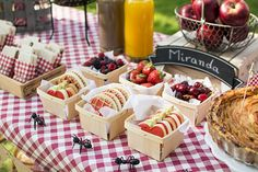 """You know how much we like picnics, so a """"picnic party"""" . Birthday Party At Park, Picnic Birthday, Outdoor Birthday, First Birthday Parties, Picnic Party Decorations, Picnic Themed Parties, Farm Party, Bbq Party, Bolo Picnic"""