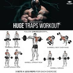 Huge traps workout traps exercises musclemorph https://musclemorphsupps.com