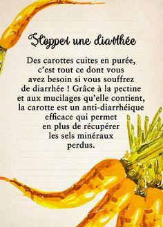 carottes pour stopper la diarrhée