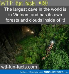 cave in vietnam - FunSubstance.com on imgfave