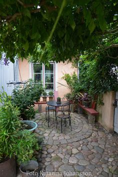 Katarinas trädgård Although old in concept, the actual pergola have been enduring a modern-day renaissance French Courtyard, Small Courtyard Gardens, Small Courtyards, Back Gardens, Outdoor Gardens, Outdoor Life, Outdoor Rooms, Outdoor Living, Diy Patio