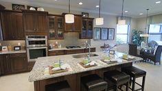Cozinhas modernas em novas casas de ferias em Orlando.