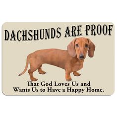 'Dachshunds are Proof'' Dog Floor Mat