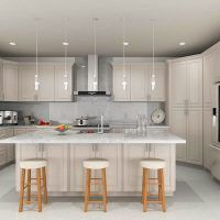 Rta Kitchen Cabinets With Hood From Conestoga Rta Cabinet Prepossessing Ash Kitchen Cabinets Inspiration