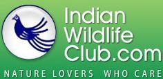 Environment Lima Rosalind  http://indianwildlifeclub.com/blog/blog-details.aspx?bid=179