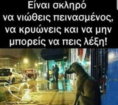 Kindness To Animals, Greek Quotes, Deep Thoughts, Animal Kingdom, Real Life, Dog Lovers, Spirit, Dogs, Color