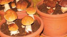 New garden design vegetable herbs 25 ideas Mushroom Kits, Mushroom Recipes, Growing Mushrooms At Home, Garden Ideas Diy Cheap, Mushroom Spores, Organic Protein, Grow Organic, Unique Gardens, Grow Your Own Food
