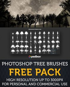 High Resolution Tree Brushes for Photoshop