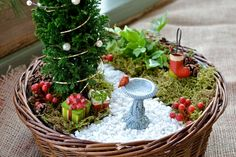I know we just passed the holidays but its never too early to start planning right?? Christmas fairy garden ideas!