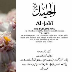 41 Al Jalil (The Mighty)