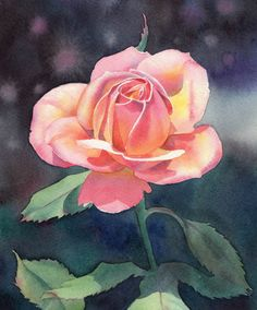 Watercolor Pictures To Painting   ... - Daily Paintings: EVER FAIR (SOLD) rose flower watercolor painting