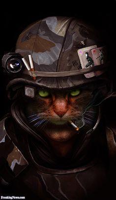 digital art by dan luvisi found at deviantart Cat Superhero, Creepy Cat, Squirrel Girl, Pet Costumes, Animal Wallpaper, Cat Drawing, Cat Design, Funny Animal Pictures, Cat Art