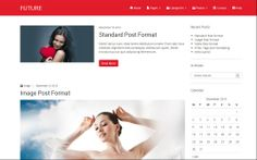 The Best Free and Premium Wordpress Themes, February 2014 - Future is a clean, creative, feature-rich and responsive multipurpose theme with Bootstrap framework for creative agencies.