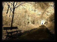 izel - Işıklı yol.. Yalnız mı yürüyeceğim