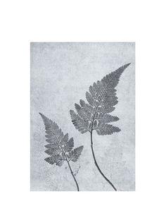 Print Fern dusty blue