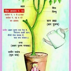 Saint Rampal Ji Maharaj Ji- संत रामपाल जी महाराज जी वह तत्… Sant Rampal ji Maharaj ji is the metaphysical saint who has directly told all the departments of the vomiting tree hanging in the form of chapter 15 of the Gita. Hindu Quotes, Gita Quotes, Desi Quotes, God Healing Quotes, Spiritual Quotes, Believe In God Quotes, Quotes About God, Good Friday Quotes Jesus, Buddha Quotes Life