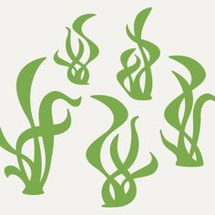 Seaweed Wall Decal Stickers for Ocean theme Nursery Baby Children. $20.00, via Etsy.