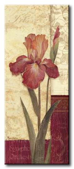 GlA_491_Quattro Sonata II / Cuadro Flores, Flor Vintage