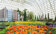 Sustentabilidade dos jardins de Cingapura