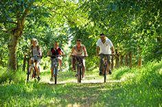 Balade à vélo dans le Lot - Par CRT Midi-Pyrénées / Dominique VIET #TourismeMidiPy #MidiPyrenees #France #EspritLot #Randonnée #vtt #velo