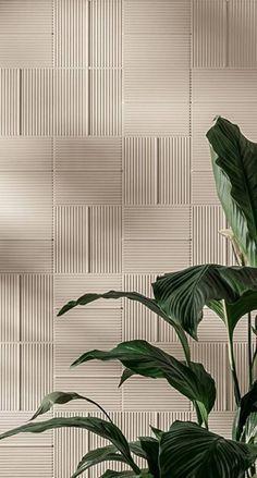 12 خلفـيات ideas in 2021 | plant wallpaper, aesthetic pictures, plant aesthetic