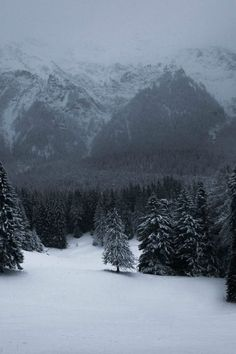 Mountains in the winter. I Love Winter, Winter Is Coming, Winter Snow, Winter Christmas, Snow Scenes, Winter Scenes, Winter Beauty, Art Graphique, Beautiful Landscapes