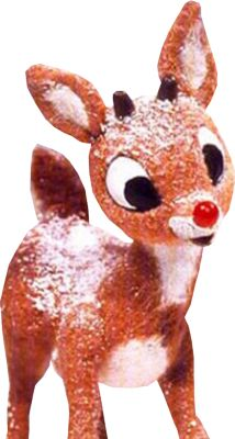 Love Rudolph!