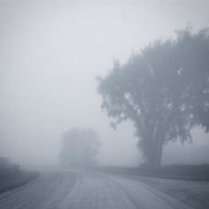 The foggy road we travel
