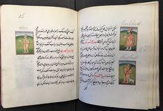 Macleods Mordant Miniatures >> 97 Best Indian Miniatures Images In 2019 Illuminated Manuscript