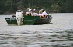 Activities and Tours in Tortuguero, Turtle nesting tour, turtle hatching tour