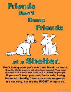 Friends Dont Dump Friends at a Shelter. Dont betray your pets trust and break its heart. Crowded shelters cannot get all animals adopted. They need space for 1000s more. This coule be BAD NEWS for your pet! If you cant keep your pet find a safe lovig home with family friends or a rescue group. Its not easy. But its the RIGHT thing to do.  -photo credit to the owner #dogs #cats