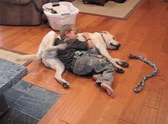 Tatlı çocuk ile şapşik köpekçik