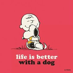 Life is better with a dog - yes it is, what I wouldn't give to be able to afford one! Ugh