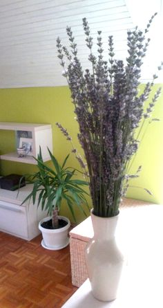 Flowers are not something I like to get as a gift... but fresh lavender from a local market just made my day. The scent of happiness :)