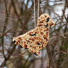 These easy DIY Birdseed Ornaments attract a wide variety of wild birds and only need 3 ingredients. Perfect for kids to make at home or in the classroom! #birdseedornaments #wintercrafts #naturecrafts Diy Arts And Crafts, Craft Stick Crafts, Crafts To Do, Fall Crafts, Christmas Crafts, Crafts For Kids, Christmas Neighbor, Simple Crafts, Craft Ideas