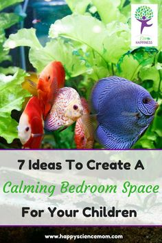 Sleep and Anxiety | Insomnia | Insomnia Remedies | Bedroom Ideas | Bedroom Decor | Bedroom Paint Colors | Children's Room | Fish Tank Ideas
