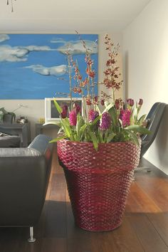 aranjamente cu flori de primavara la ghiveci