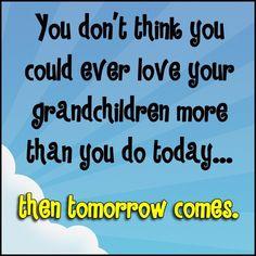 Grandma loves you my precious grandchildren! God Bless You and keep you safe- Grandma Grandmother Quotes, Grandma And Grandpa, Grandma Sayings, Family Quotes, Me Quotes, Girl Quotes, Woman Quotes, Qoutes, Quotes About Grandchildren