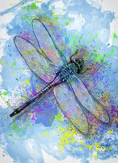 Dragonfly Painting - Colorful Dragonfly by Jack Zulli Dragonfly Painting, Dragonfly Wall Art, Information Art, Multimedia Arts, Sound Art, People Art, Blue Art, Abstract Backgrounds, Art Projects