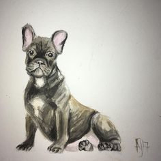 "Gefällt 24 Mal, 2 Kommentare - G O*C R E A T E (@anja.jaeger) auf Instagram: ""Fledermaus oder Hund wufff"" Drawing Sketches, Drawings, Watercolor Pencils, French Bulldog, Illustration Art, Black And White, Abstract, Dogs, Painting"