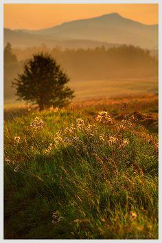Warm Summer in Tatry by Castillion . on 500px