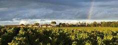 The 15 Best Chateaux to Visit in Bordeaux