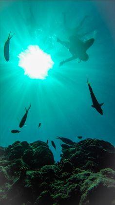 #Diving #gopro 👊🏻