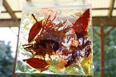hair gel suncatchers-visual and tactile...use on window or light box