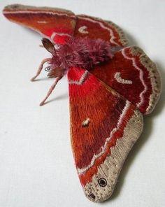 Fabric sculpture Large cross's wave moth textile art by YumiOkita - Cris Figueired♥ Textiles, Fabric Art, Fabric Crafts, Cotton Fabric, Bordados E Cia, Insect Art, Textile Fiber Art, Soft Sculpture, Beautiful Butterflies
